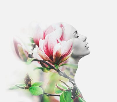 Beautys